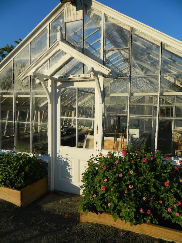 CG-greenhouse