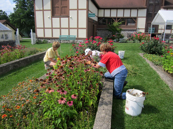 gardeners2-web