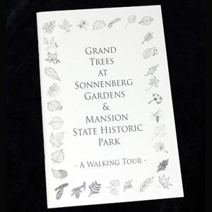 5026_Sonnenberg_Tree_Book