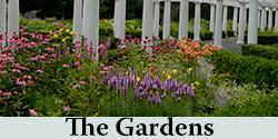 Gardens Button